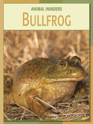 cover image of Bullfrog