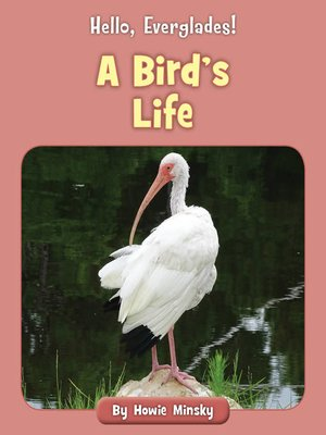 cover image of A Bird's Life