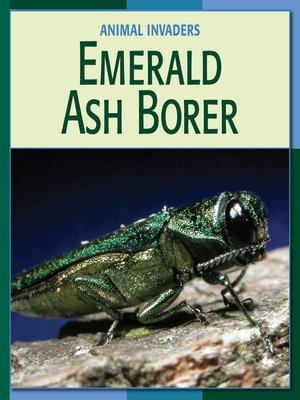 cover image of Emerald Ash Borer