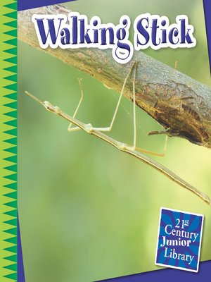 cover image of Walking Stick