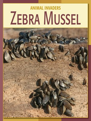 cover image of Zebra Mussel