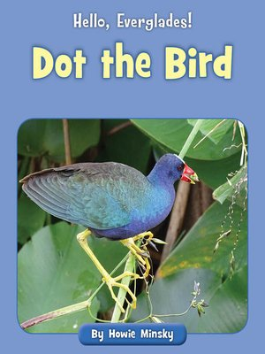 cover image of Dot the Bird