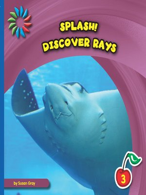 cover image of Discover Rays