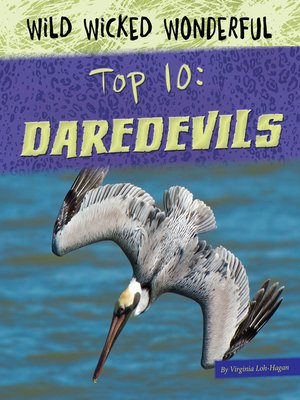 cover image of Daredevils