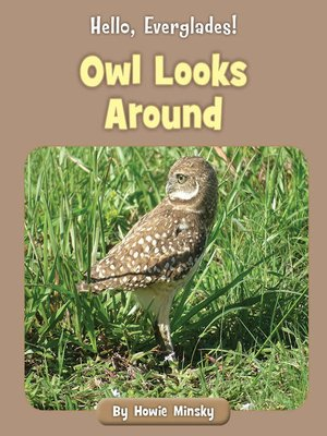 cover image of Owl Looks Around