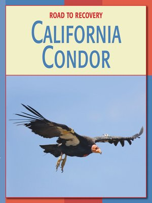 cover image of California Condor