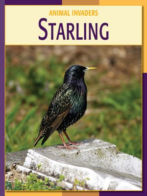 cover image of Starling