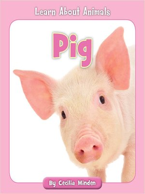 cover image of Pig