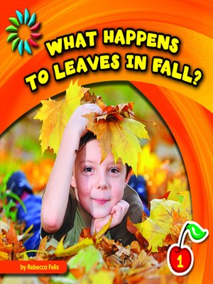 cover image of What Happens to Leaves in Fall?