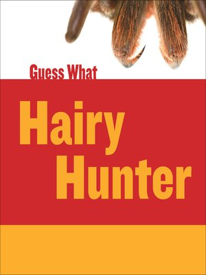 cover image of Hairy Hunter
