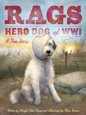 cover image of Rags