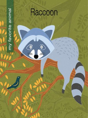 cover image of Raccoon
