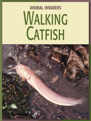 cover image of Walking Catfish