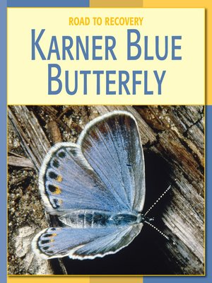 cover image of Karner Blue Butterfly