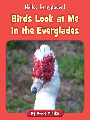 cover image of Birds Look at Me in the Everglades