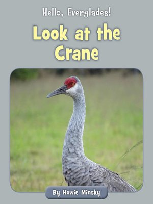 cover image of Look at the Crane