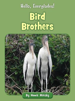 cover image of Bird Brothers