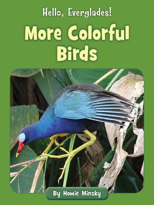 cover image of More Colorful Birds