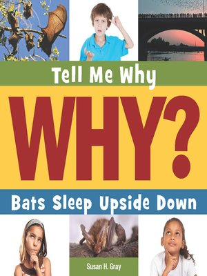 cover image of Bats Sleep Upside Down