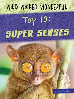 cover image of Top 10 Super Senses