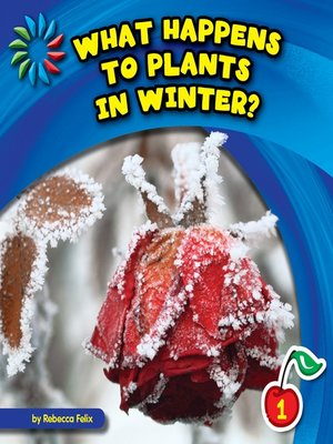 cover image of What Happens to Plants in Winter?