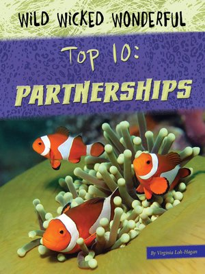 cover image of Top 10 Partnerships