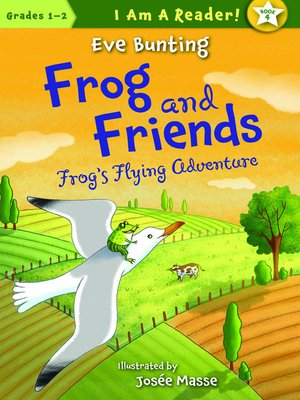 cover image of Frog's Flying Adventure