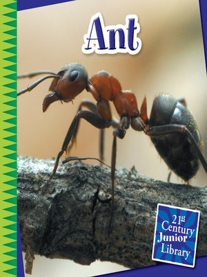 cover image of Ant