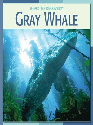 cover image of Gray Whale