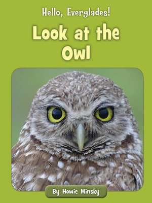 cover image of Look at the Owl