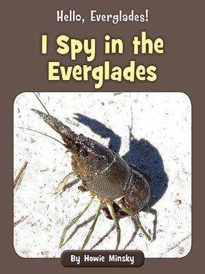 cover image of I Spy in the Everglades