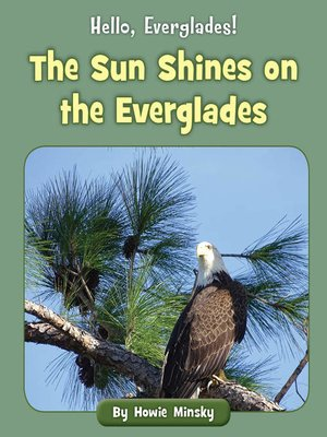 cover image of The Sun Shines on the Everglades