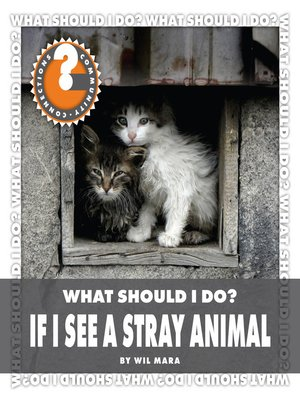 cover image of What Should I Do? If I See a Stray Animal