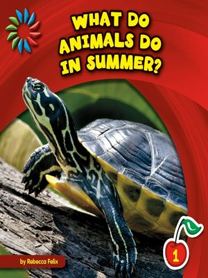 cover image of What Do Animals Do in Summer?