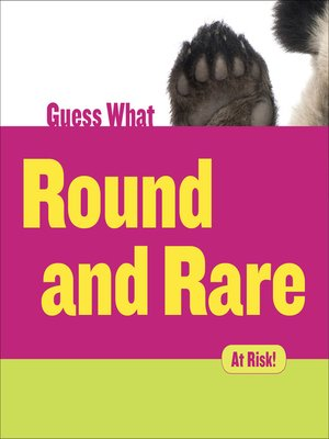 cover image of Round and Rare - Giant Panda