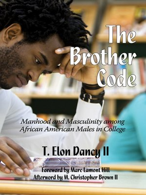 cover image of The Brother Code