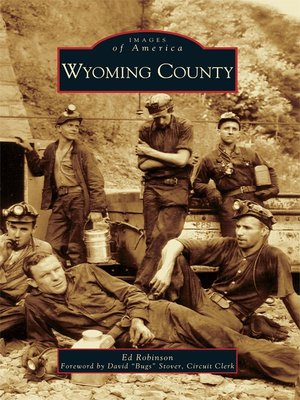 cover image of Wyoming County