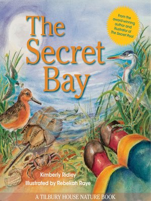 cover image of The Secret Bay