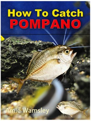 cover image of How To Catch Pompano