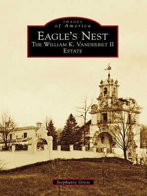 cover image of Eagle's Nest