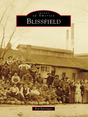 cover image of Blissfield