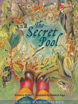cover image of The Secret Pool