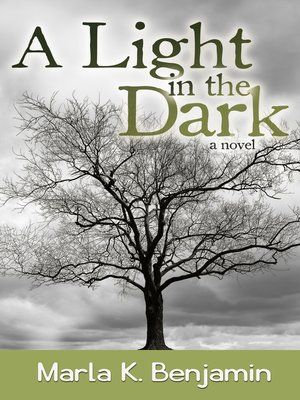 cover image of A Light in the Dark