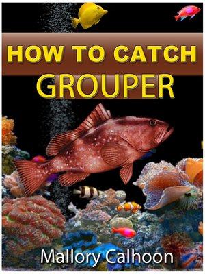 cover image of How To Catch Grouper