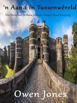 cover image of 'n Aand in Tussenwêreld