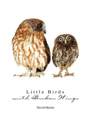 cover image of Little Birds with Broken Wings