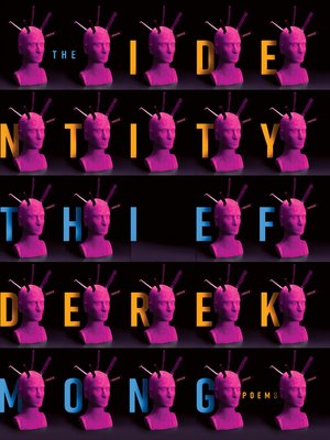 cover image of The Identity Thief