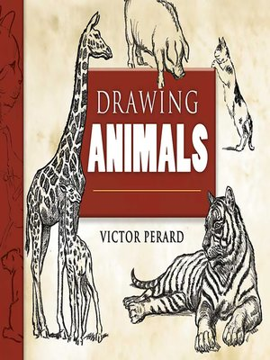 cover image of Drawing Animals