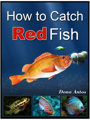 cover image of How To Catch Redfish