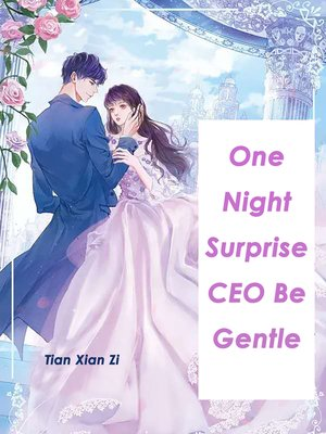 cover image of One Night Surprise